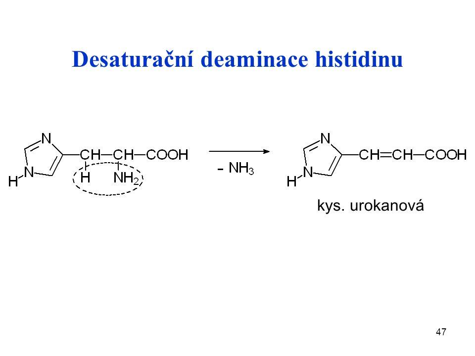 47 Desaturační deaminace histidinu kys. urokanová