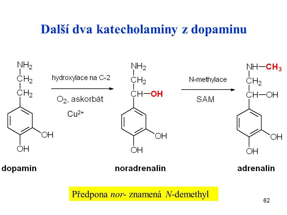 62 Další dva katecholaminy z dopaminu Cu 2+ Předpona nor- znamená N-demethyl