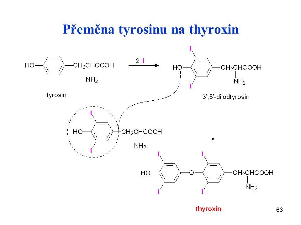 63 Přeměna tyrosinu na thyroxin