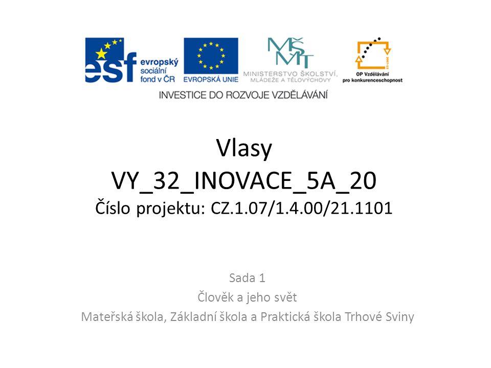 Vlasy VY_32_INOVACE_5A_20 Číslo projektu: CZ.1.07/1.4.00/21.1101 Sada 1 Člověk a jeho svět Mateřská škola, Základní škola a Praktická škola Trhové Sviny