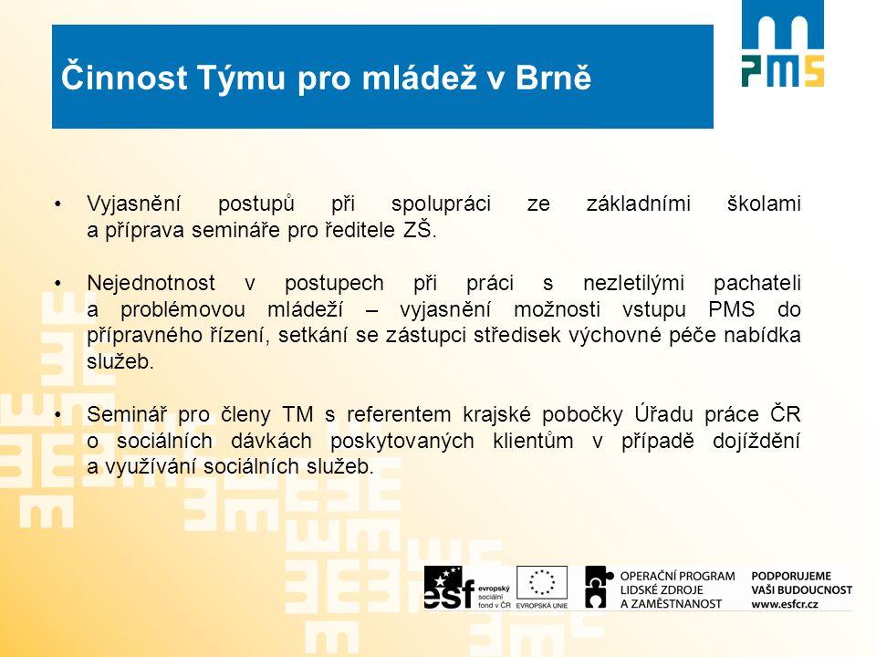 Činnost Týmu pro mládež v Brně Vyjasnění postupů při spolupráci ze základními školami a příprava semináře pro ředitele ZŠ.