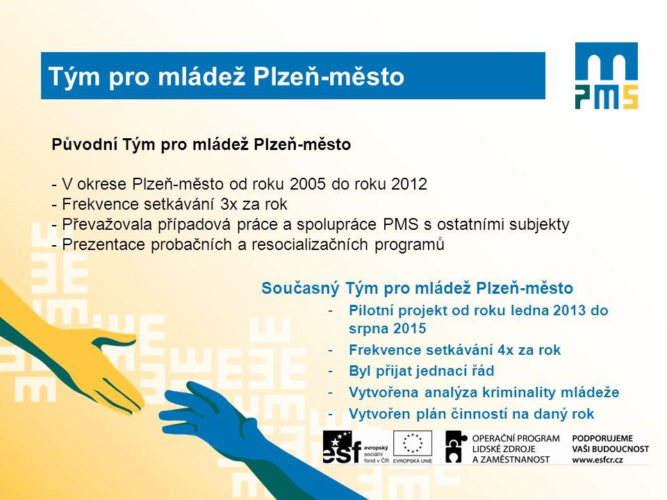 Původní Tým pro mládež Plzeň-město - V okrese Plzeň-město od roku 2005 do roku 2012 - Frekvence setkávání 3x za rok - Převažovala případová práce a spolupráce PMS s ostatními subjekty - Prezentace probačních a resocializačních programů Současný Tým pro mládež Plzeň-město -Pilotní projekt od roku ledna 2013 do srpna 2015 -Frekvence setkávání 4x za rok -Byl přijat jednací řád -Vytvořena analýza kriminality mládeže -Vytvořen plán činností na daný rok Tým pro mládež Plzeň-město