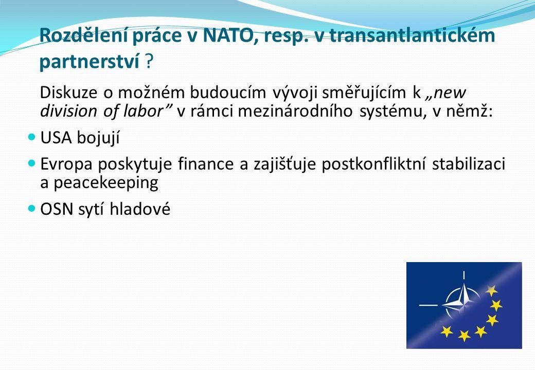 """Rozdělení práce v NATO, resp. v transantlantickém partnerství ? Diskuze o možném budoucím vývoji směřujícím k """"new division of labor"""" v rámci mezináro"""