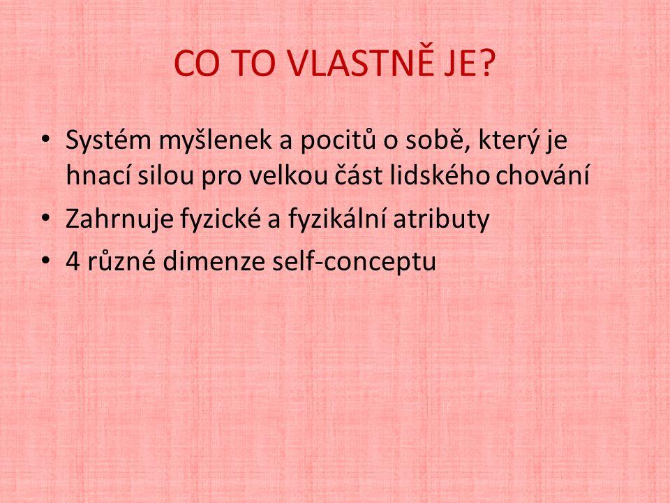 CO TO VLASTNĚ JE.