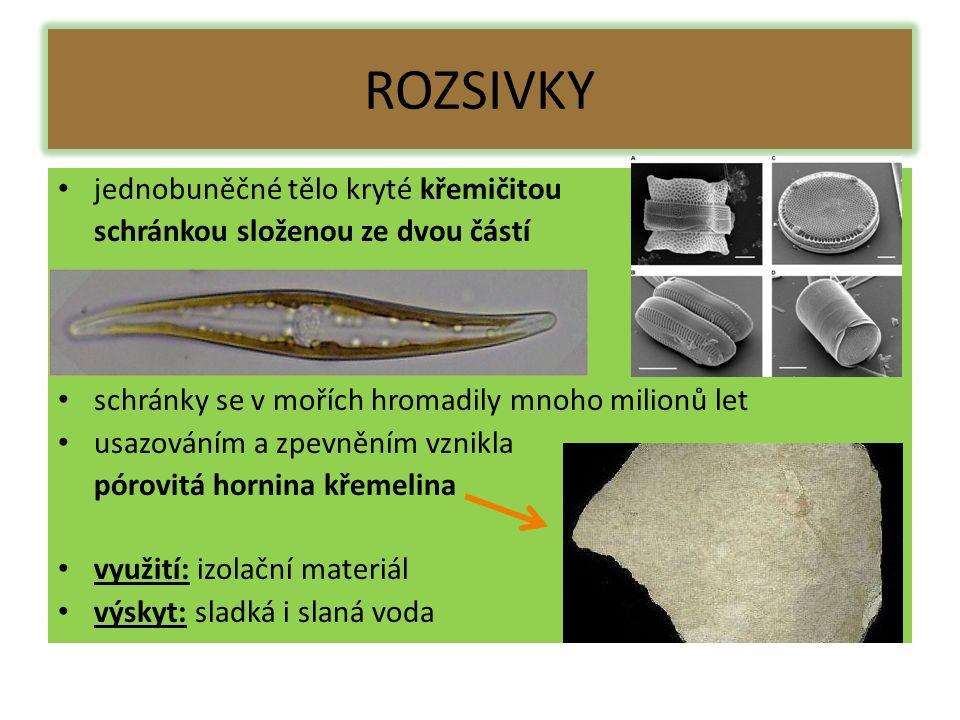 ROZSIVKY jednobuněčné tělo kryté křemičitou schránkou složenou ze dvou částí schránky se v mořích hromadily mnoho milionů let usazováním a zpevněním vznikla pórovitá hornina křemelina využití: izolační materiál výskyt: sladká i slaná voda