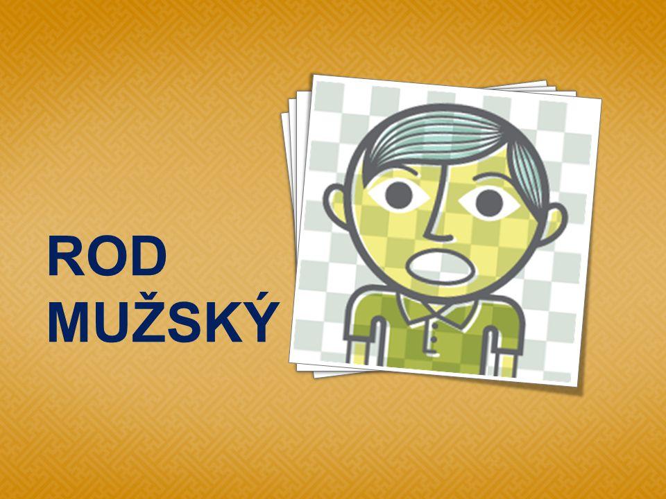  Lupič ukradl z kasy dva tisíce. Z Mladé Boleslav i není daleko do Čáslavi.