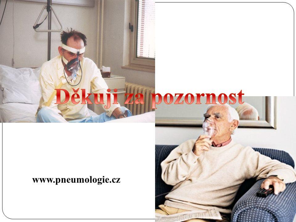 www.pneumologie.cz