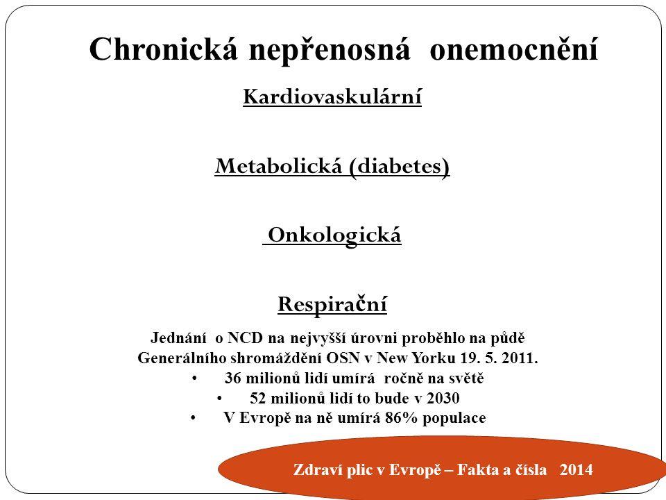 Kardiovaskulární Metabolická (diabetes) Onkologická Respira č ní Chronická nepřenosná onemocnění Jednání o NCD na nejvyšší úrovni proběhlo na půdě Generálního shromáždění OSN v New Yorku 19.