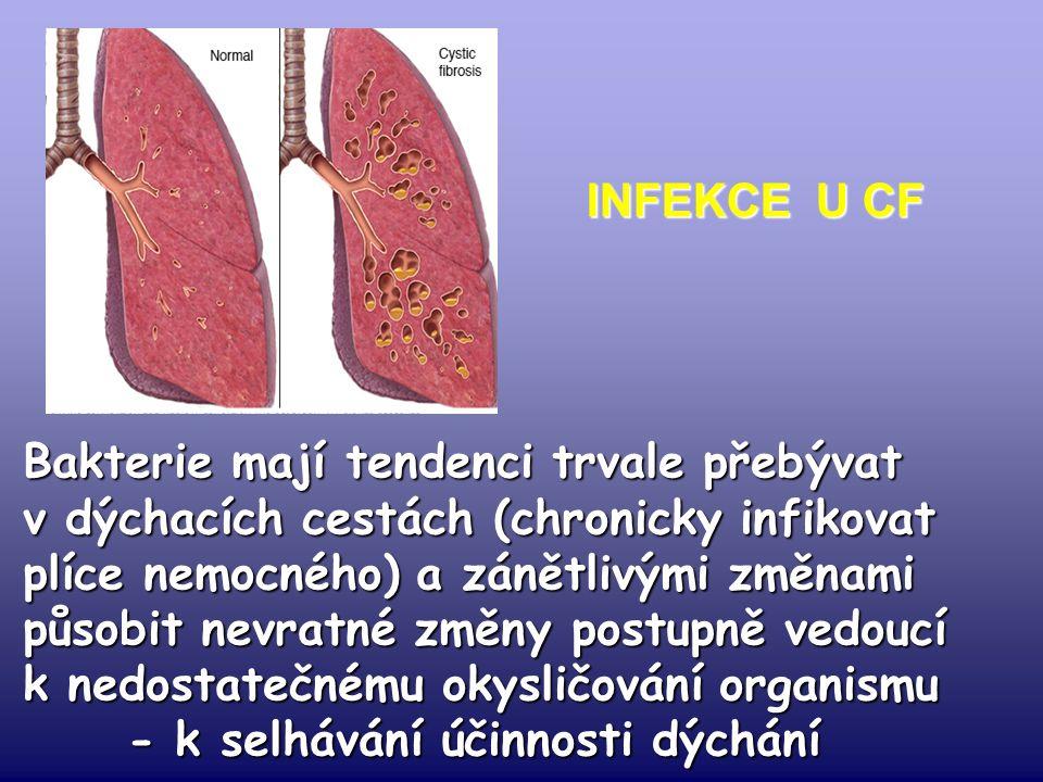 INFEKCE U CF Bakterie mají tendenci trvale přebývat v dýchacích cestách (chronicky infikovat plíce nemocného) a zánětlivými změnami působit nevratné změny postupně vedoucí k nedostatečnému okysličování organismu - k selhávání účinnosti dýchání