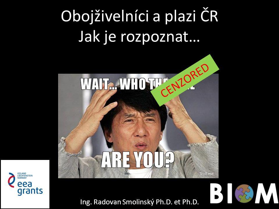 Obojživelníci a plazi ČR Jak je rozpoznat… CENZORED Ing. Radovan Smolinský Ph.D. et Ph.D.