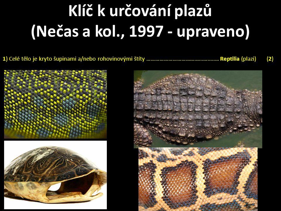 1) Celé tělo je kryto šupinami a/nebo rohovinovými štíty …………………………….…..….....… Reptilia (plazi) (2) Klíč k určování plazů (Nečas a kol., 1997 - upraveno)