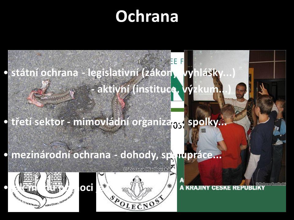 státní ochrana - legislativní (zákony, vyhlášky...) - aktivní (instituce, výzkum...) třetí sektor - mimovládní organizace, spolky...