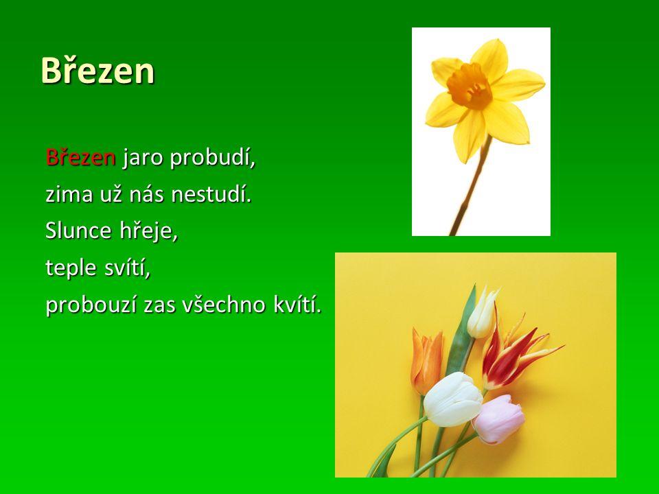 JARO  Dny se prodlužují, noci krátí  Na jaře se probouzí příroda  Zvířatům se rodí mláďata  Začínají kvést květiny a stromy  Jarní svátky jsou Velikonoce a Svátek matek  Mezi jarní měsíce patří: březen, duben, květen