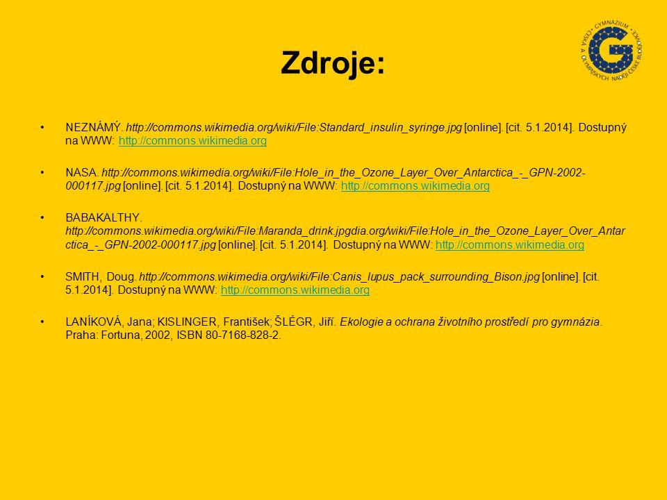 Zdroje: NEZNÁMÝ.http://commons.wikimedia.org/wiki/File:Standard_insulin_syringe.jpg [online].