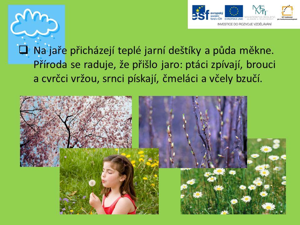  Na jaře přicházejí teplé jarní deštíky a půda měkne.