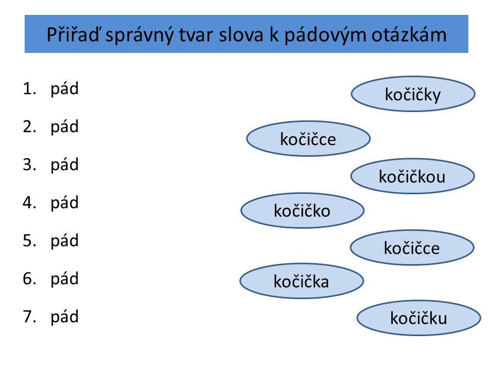 Přiřaď správný tvar slova k pádovým otázkám 1.pád 2.pád 3.pád 4.pád 5.pád 6.pád 7.pád kočičko kočičkou kočička kočičce kočičku kočičky kočičce