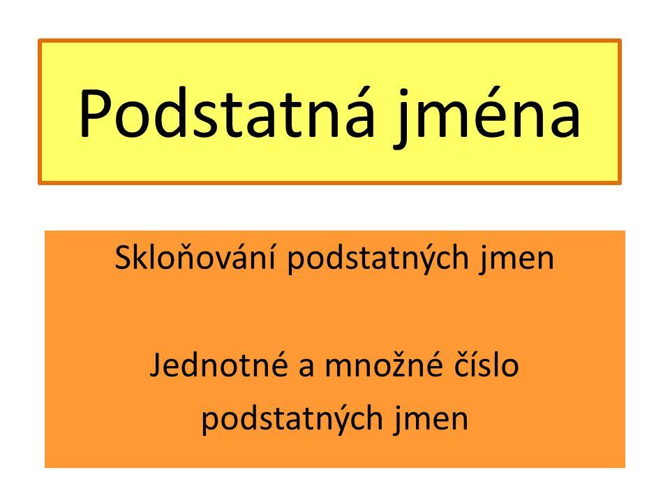 Podstatná jména Skloňování podstatných jmen Jednotné a množné číslo podstatných jmen
