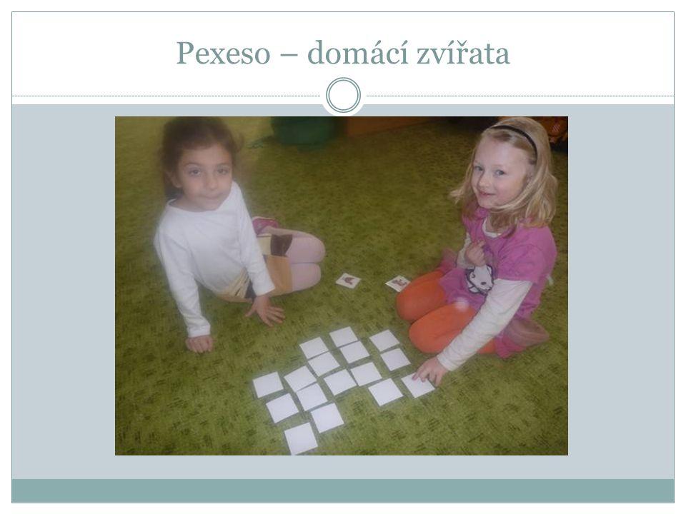 Pexeso – domácí zvířata