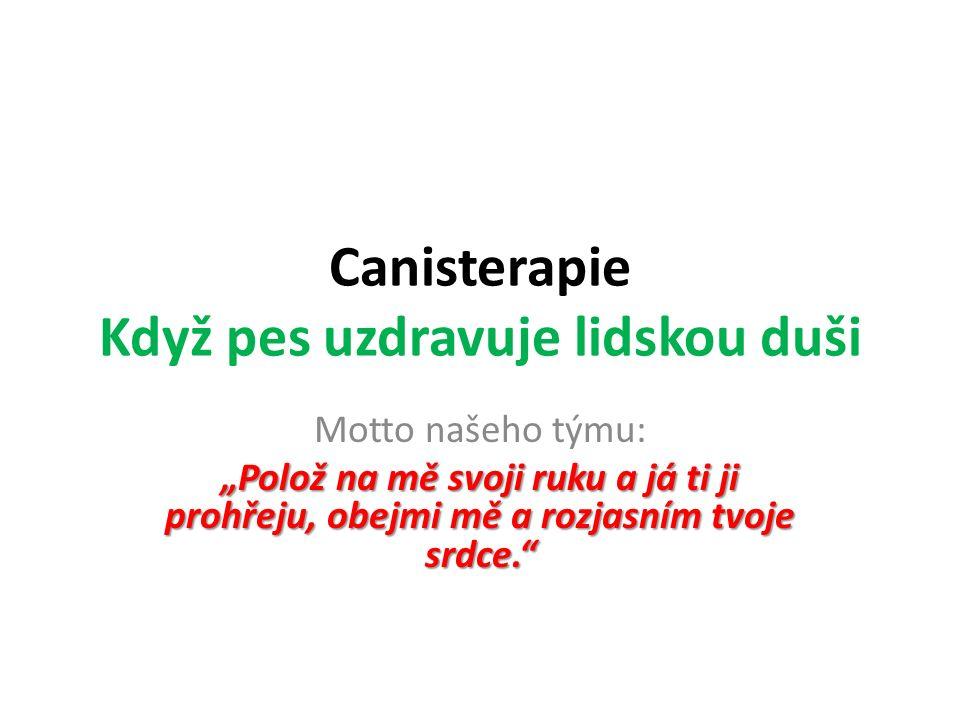 """Domov pro seniory Luhačovice 18. 8. 2014 Příprava nového """"psího člena do canisterapeutického týmu"""