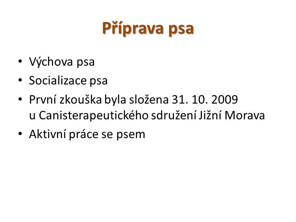 Příprava psa Výchova psa Socializace psa První zkouška byla složena 31. 10. 2009 u Canisterapeutického sdružení Jižní Morava Aktivní práce se psem