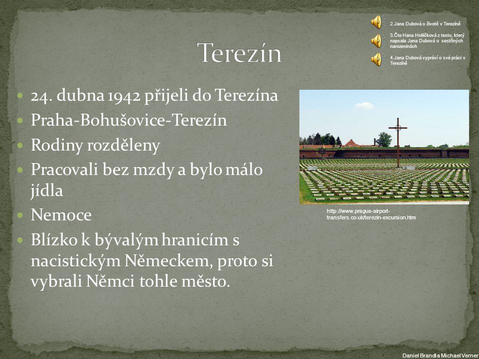 24. dubna 1942 přijeli do Terezína Praha-Bohušovice-Terezín Rodiny rozděleny Pracovali bez mzdy a bylo málo jídla Nemoce Blízko k bývalým hranicím s n