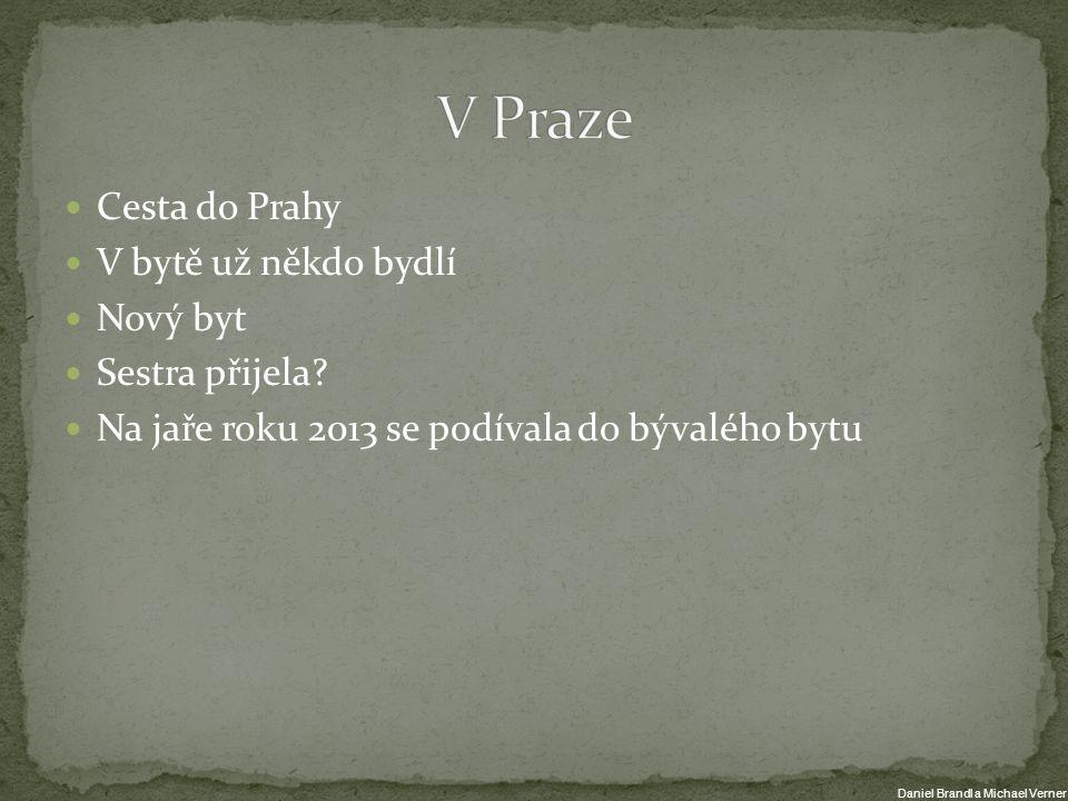 Cesta do Prahy V bytě už někdo bydlí Nový byt Sestra přijela? Na jaře roku 2013 se podívala do bývalého bytu Daniel Brandl a Michael Verner