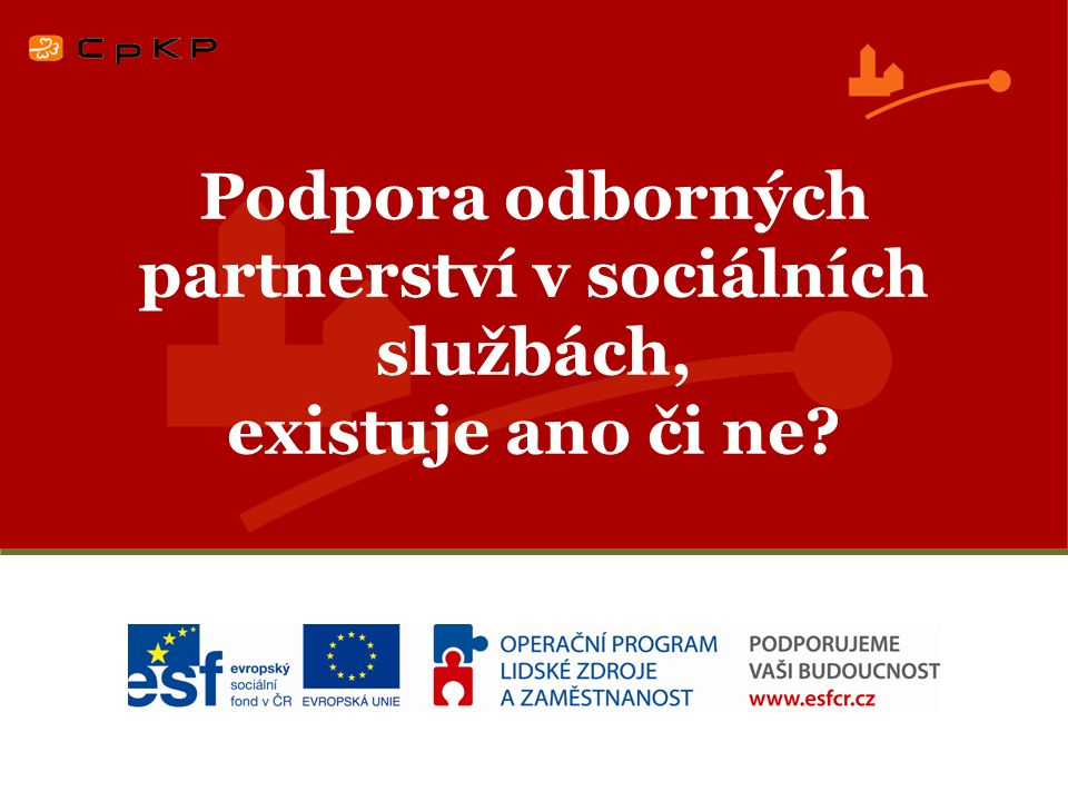 Podpora odborných partnerství v sociálních službách, existuje ano či ne