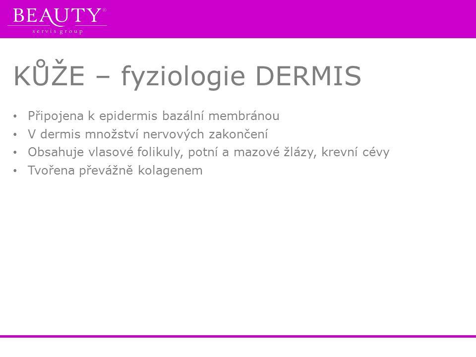 KŮŽE – fyziologie DERMIS Připojena k epidermis bazální membránou V dermis množství nervových zakončení Obsahuje vlasové folikuly, potní a mazové žlázy, krevní cévy Tvořena převážně kolagenem