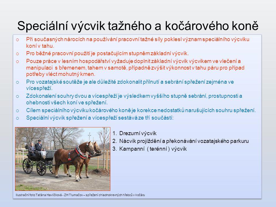 Speciální výcvik tažného a kočárového koně o Při současných nárocích na používání pracovní tažné síly poklesl význam speciálního výcviku koní v tahu.
