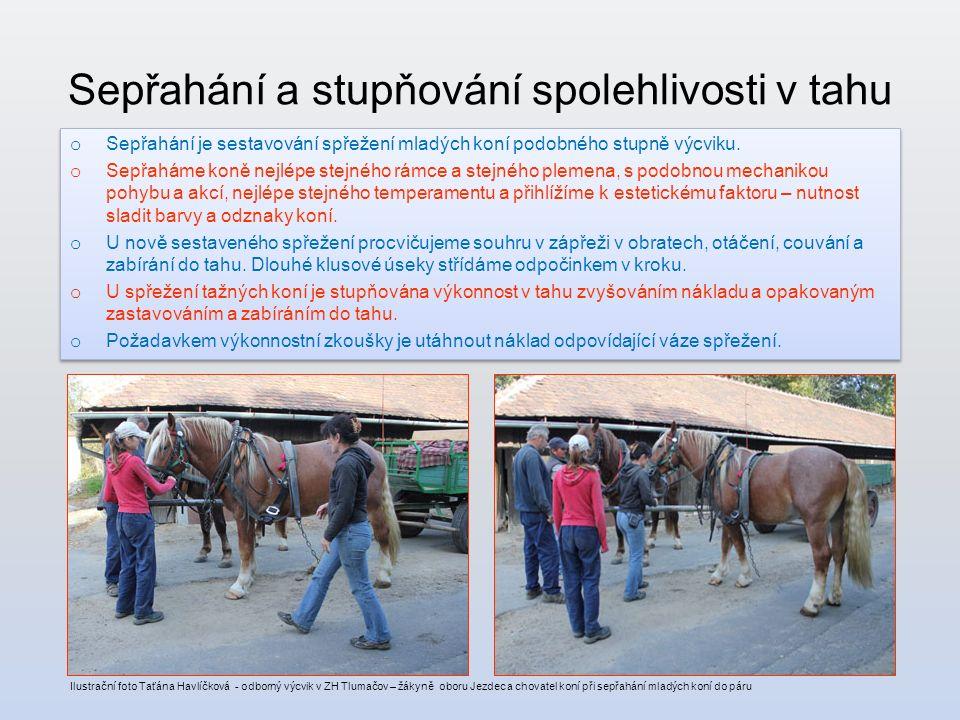 Sepřahání a stupňování spolehlivosti v tahu o Sepřahání je sestavování spřežení mladých koní podobného stupně výcviku.