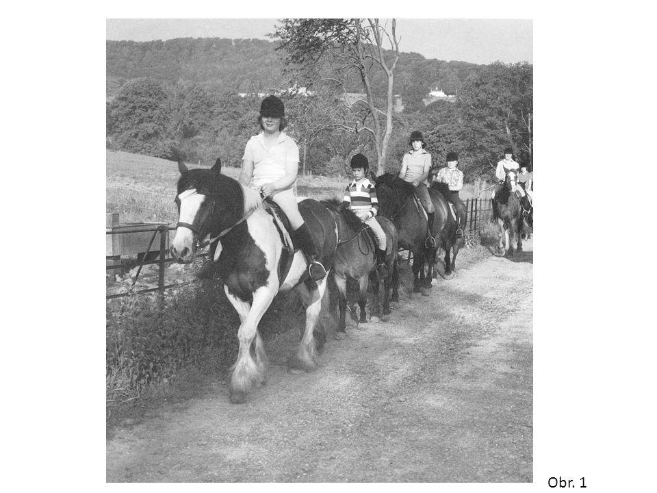 Jízda po silnici Při jízdě ve skupině se jezdci drží ve dvojicích s minimálním odstupem koní 1,5m u pravé krajnice Mladí koně a nezkušení jezdci by se měli držet uprostřed a blíže krajnici Je-li silnice příliš úzká, drží se jezdci v zástupu Jízdě ve tmě nebo v mlze je dobré se vyhnout, je-li to však nutné, je potřeba jezdce i koně vybavit reflexními doplňky Pamatujte si: vidět….být viděn……..být bezpečný.