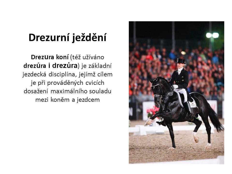 Drezurní ježdění Drez u ra koní (též užíváno drez ú ra i drezůra ) je základní jezdecká disciplína, jejímž cílem je při prováděných cvicích dosažení maximálního souladu mezi koněm a jezdcem
