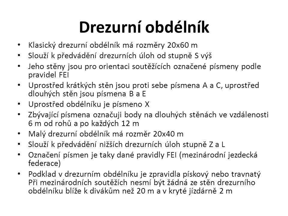 Drezurní obdélník Klasický drezurní obdélník má rozměry 20x60 m Slouží k předvádění drezurních úloh od stupně S výš Jeho stěny jsou pro orientaci sout