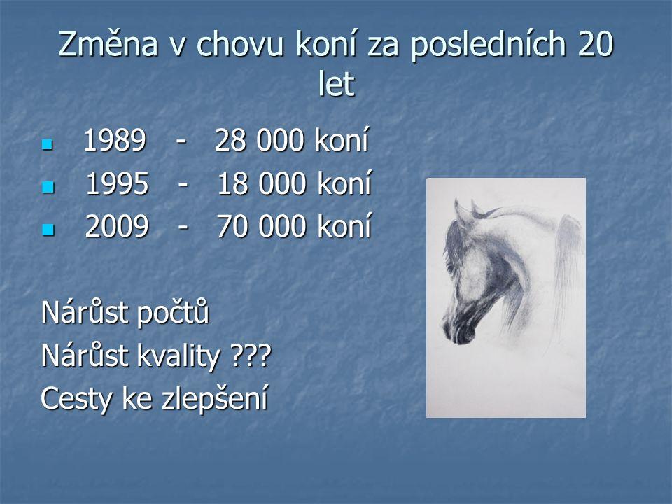 Změna v chovu koní za posledních 20 let 1989 - 28 000 koní 1989 - 28 000 koní 1995 - 18 000 koní 1995 - 18 000 koní 2009 - 70 000 koní 2009 - 70 000 koní Nárůst počtů Nárůst kvality .