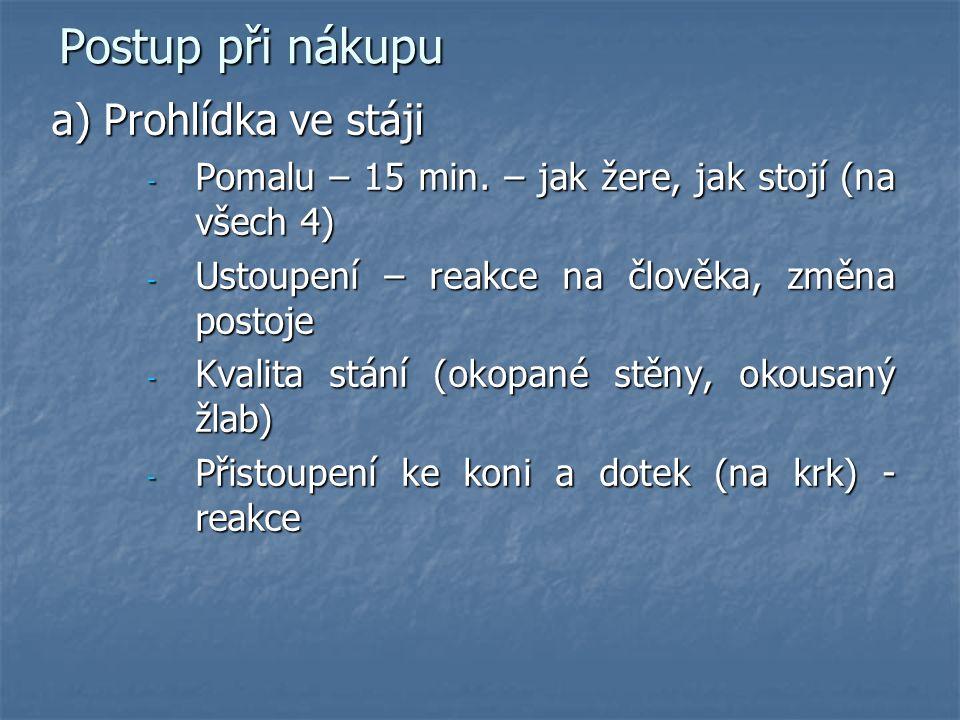 Postup při nákupu a) Prohlídka ve stáji - Pomalu – 15 min.