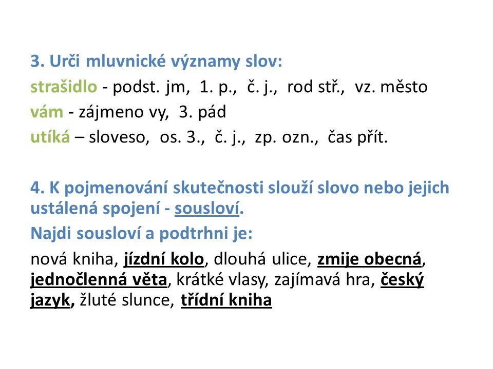 3. Urči mluvnické významy slov: strašidlo - podst.