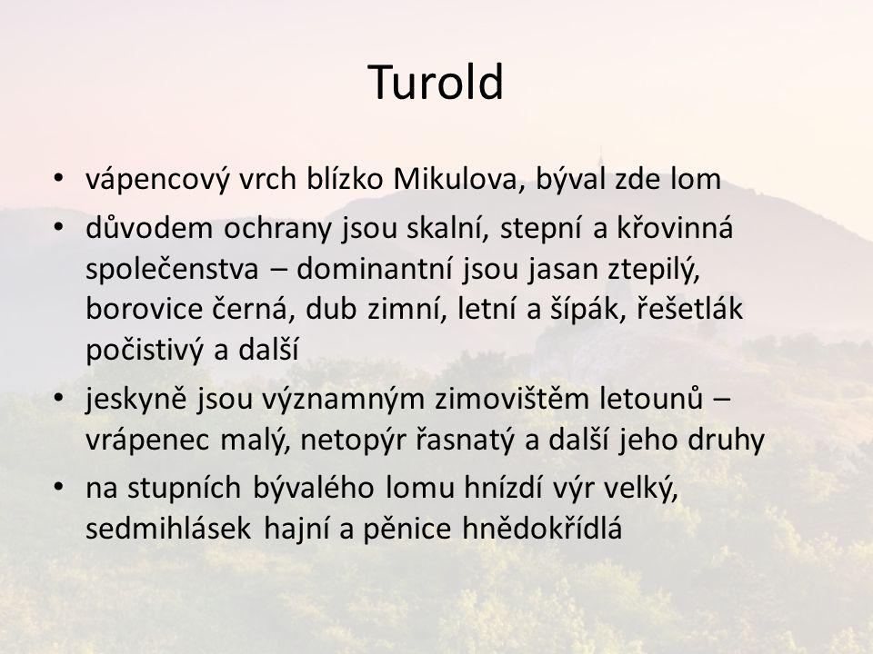 Turold vápencový vrch blízko Mikulova, býval zde lom důvodem ochrany jsou skalní, stepní a křovinná společenstva – dominantní jsou jasan ztepilý, boro