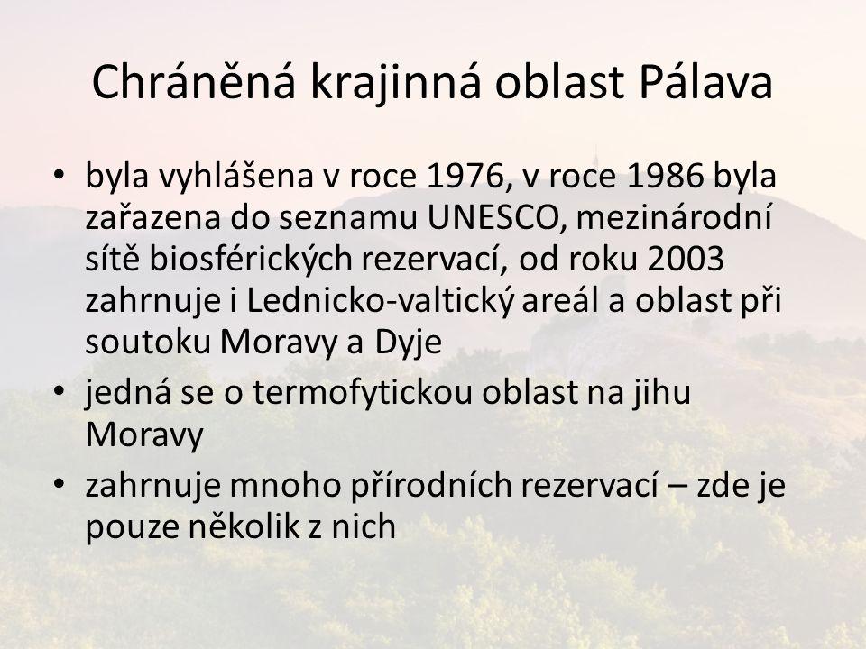 Chráněná krajinná oblast Pálava byla vyhlášena v roce 1976, v roce 1986 byla zařazena do seznamu UNESCO, mezinárodní sítě biosférických rezervací, od roku 2003 zahrnuje i Lednicko-valtický areál a oblast při soutoku Moravy a Dyje jedná se o termofytickou oblast na jihu Moravy zahrnuje mnoho přírodních rezervací – zde je pouze několik z nich