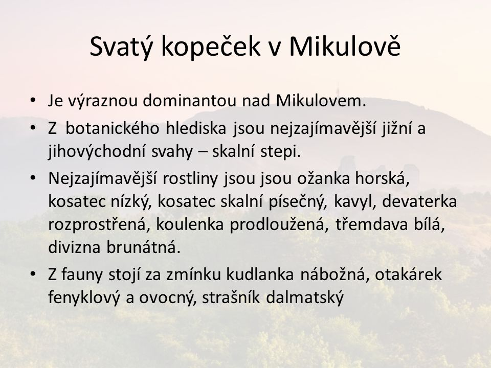 Svatý kopeček v Mikulově Je výraznou dominantou nad Mikulovem.