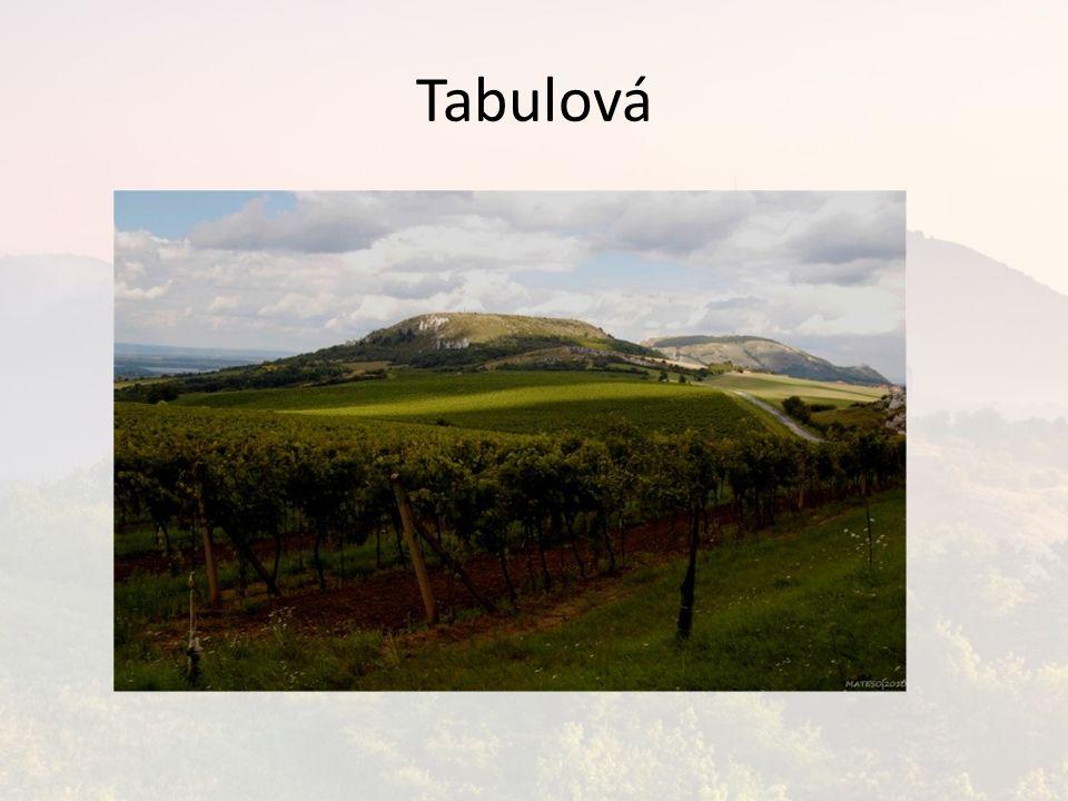 Tabulová