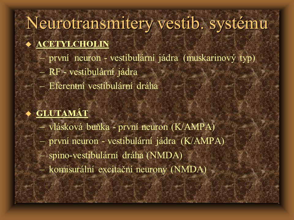 Neurotransmitery vestib. systému u ACETYLCHOLIN –první neuron - vestibulární jádra (muskarinový typ) –RF - vestibulární jádra –Eferentní vestibulární