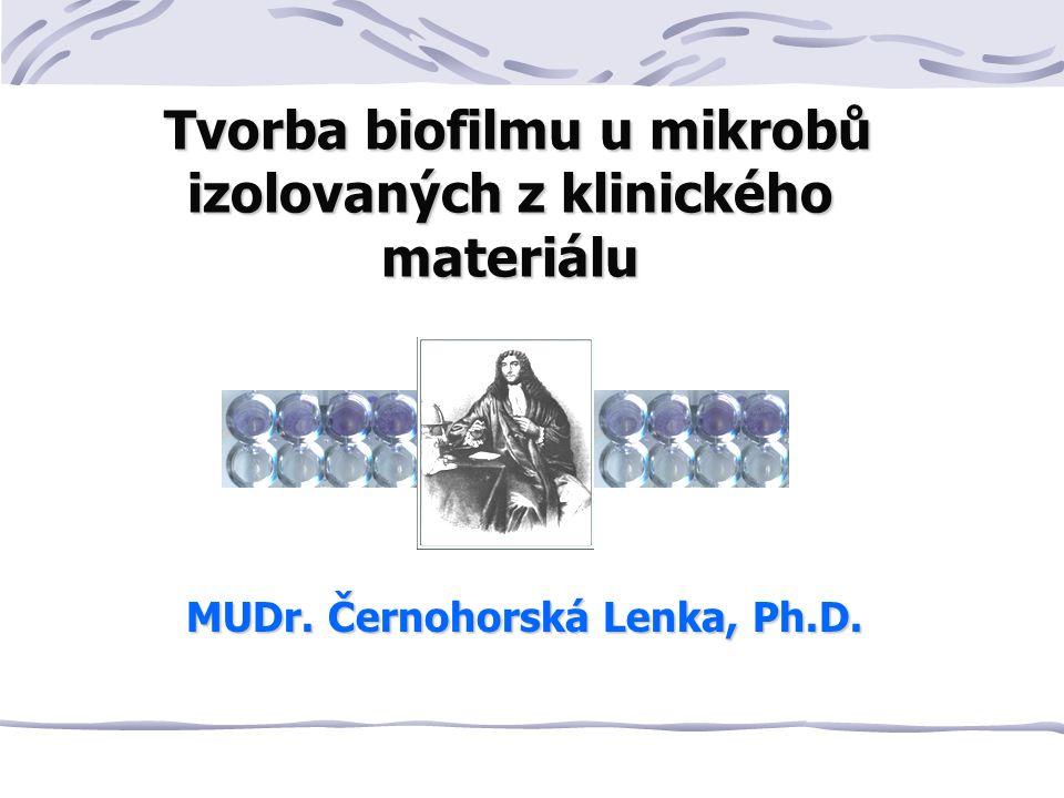Tvorba biofilmu u mikrobů izolovaných z klinického materiálu Tvorba biofilmu u mikrobů izolovaných z klinického materiálu MUDr.