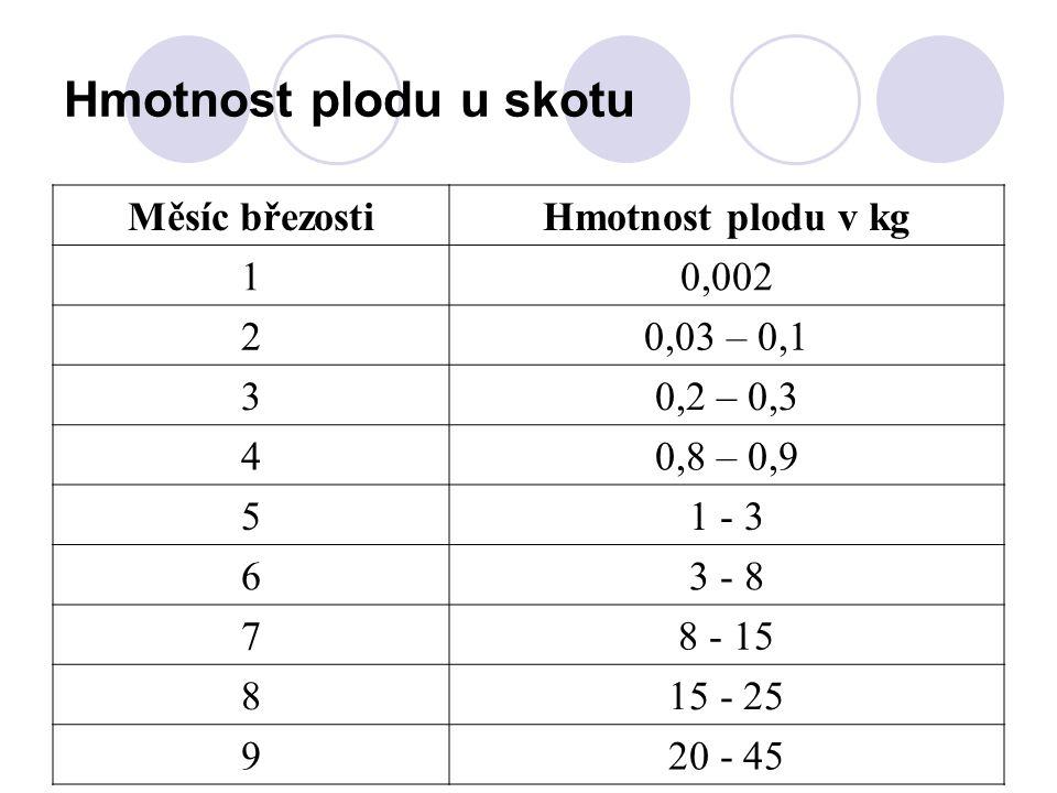 Hmotnost plodu u skotu Měsíc březostiHmotnost plodu v kg 10,002 20,03 – 0,1 30,2 – 0,3 40,8 – 0,9 51 - 3 63 - 8 78 - 15 815 - 25 920 - 45