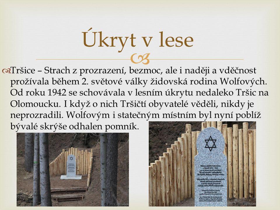  Osudy Wolfových jsou známé i díky deníku, který si nejmladší člen Otto během války psal  Poblíž lesní skrýše,ve které rodina pobývala, je i památník pro padlé při holokaustu  Jednoduchá žulová deska má připomínat, co vše museli Wolfovi v lese prožívat a jak náročné pro ně válečné období bylo  V létě 1942 měli nastoupit do prvního olomouckého transportu směr Terezín.