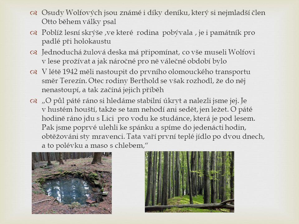  Smrt Otty Wolfa 20 dní před koncem války byl Otto Wolf upálen s dalšími osmnácti muži v lese poblíž vesnice Zákřovský Žalov v dřevěné boudě na dřevorubecké náčiní.