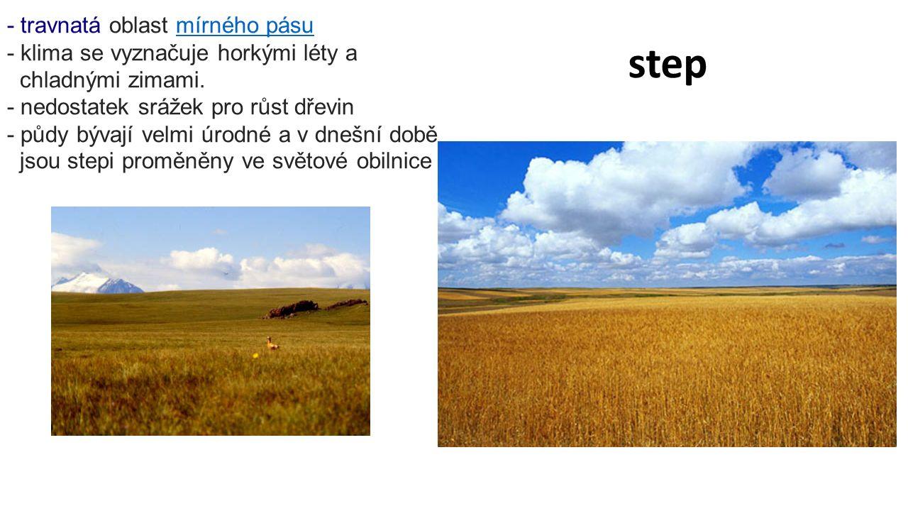 step - travnatá oblast mírného pásumírného pásu - klima se vyznačuje horkými léty a chladnými zimami.