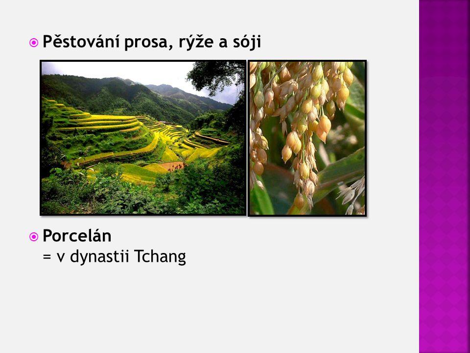  Pěstování prosa, rýže a sóji  Porcelán = v dynastii Tchang
