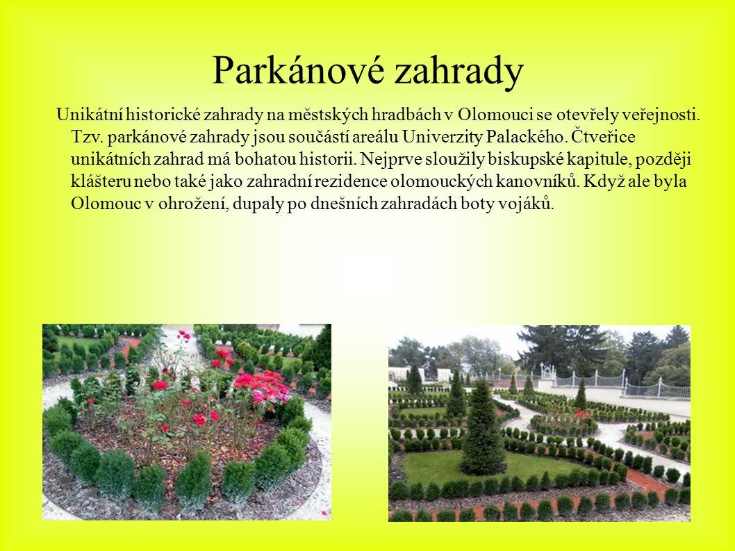 Parkánové zahrady Unikátní historické zahrady na městských hradbách v Olomouci se otevřely veřejnosti. Tzv. parkánové zahrady jsou součástí areálu Uni