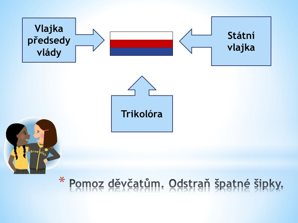 Vlajka předsedy vlády Státní vlajka Trikolóra