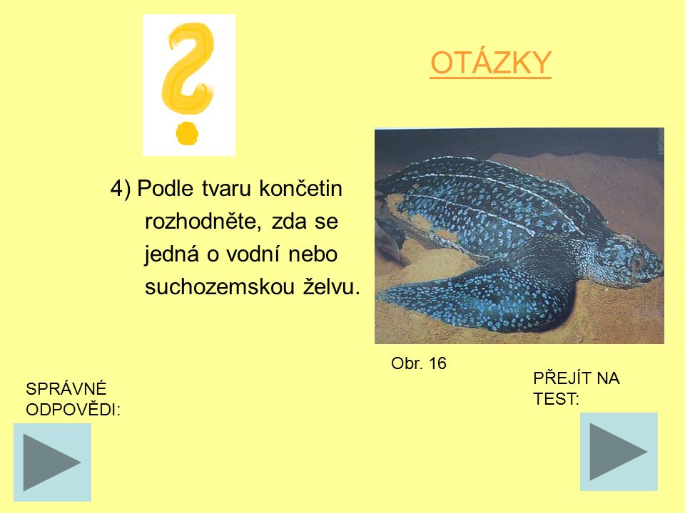 OTÁZKY 4) Podle tvaru končetin rozhodněte, zda se jedná o vodní nebo suchozemskou želvu. SPRÁVNÉ ODPOVĚDI: PŘEJÍT NA TEST: Obr. 16